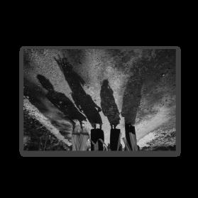 Their Shadows